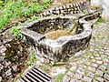 Fontaine Sainte-Walburge. Heiligenbrunn. Leymen.jpg