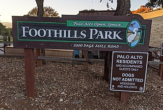 Foothills Park Park in Palo Alto, California, United States