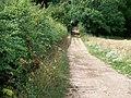 Footpath crosses bridleway (1) - geograph.org.uk - 1988171.jpg