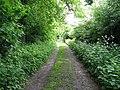 Footpath heading south to Novington Manor - geograph.org.uk - 1315292.jpg