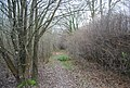 Footpath through the woods - geograph.org.uk - 1106058.jpg