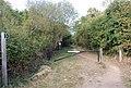 Footpath to Haysden Country Park from Lower Haysden Lane - geograph.org.uk - 1525359.jpg