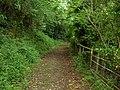 Footpath to Pen-Llan-y-Gwr - geograph.org.uk - 833549.jpg
