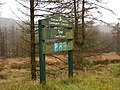 Forestry Commission, Tywi - Cwm Berwyn - geograph.org.uk - 290630.jpg