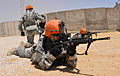 Fort Hood Cavalrymen support Exercise Hermes Respite II 140810-A-BE343-002.jpg