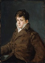 Francisco Goya y Lucientes - Portrait of a Young Man in Brown, possibly Javier Goya - 48.558 - Museum of Fine Arts.jpg