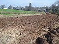 Fresh ploughing at Boyce Court - geograph.org.uk - 768449.jpg