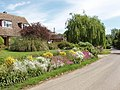 Front garden, Sutton Lane - geograph.org.uk - 442395.jpg