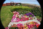 Front garden IMG 1775 (9487449242).jpg