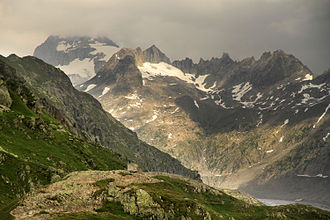 Small mountain ringlet - Habitat in the Uri Alps