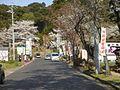 Ganjoji-Gifu2008-1.jpg