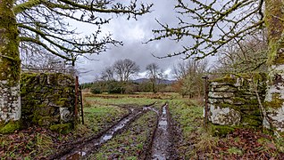 Gate and farm tracks close to Gartur Stitich Farm, Scotland.jpg