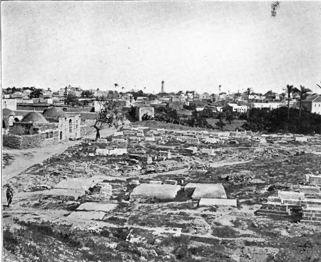 Gazza 1906