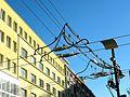 Gdynia overhead lines.jpg