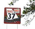 Georgia Route 37 sign. Ray City, GA.jpg