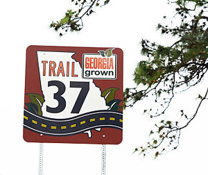 Georgia State Route 37 - SR 37 sign east of Ray City