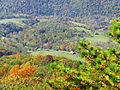 Germany-valley-fall - West Virginia - ForestWander.jpg
