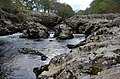 Glen Nevis - geograph.org.uk - 592898.jpg