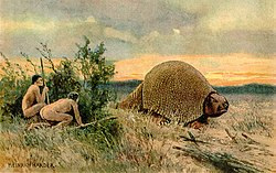 Glyptodon old drawing.jpg