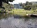 Godawari botanical garden 20180912 134823.jpg