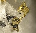 Gold-Hessite-Kutnohorite-266452.jpg