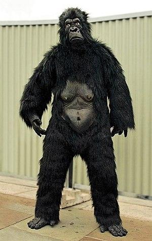 Gorilla suit - Gorilla suit