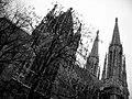 Gothic (Votivkirche) - panoramio - fabiolah.jpg