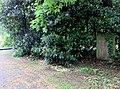 Grab Helmut Griem FriedhofOhlsdorf (1).jpg
