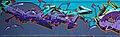 Graffiti (8141465431).jpg