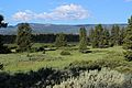 Grand Teton NP 2014 14.JPG