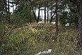 Grav vid Snäck, Visby, Gotland.jpg