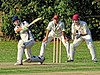 Great Canfield CC v Hatfield Heath CC at Great Canfield, Essex, England 42.jpg