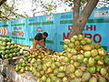 Green Coconut Vendor in India in Summer.jpg