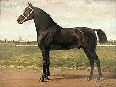 Peinture représentant le profil gauche d'un cheval bai foncé à l'avant-main forte.
