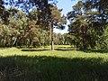 Grove - panoramio (2).jpg