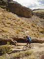 Gunnison Gorge NCA (9315336522).jpg