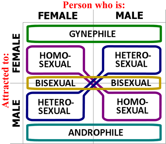 Androphilia and gynephilia gynesexuality