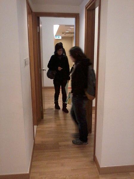 File:HK CSW Greenview Villa 綠悠雅苑 Showflat 示位 Tower 2 Unit E Two-bedroom flat corridor Jan-2013.jpg