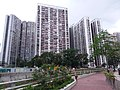 HK SPK 新蒲崗 San Po Kong 彩虹道 Choi Hung Road May 2019 SSG 18.jpg