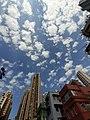 HK SW 上環 Sheung Wan 太平山街 Tai Ping Shan Street 卜公花園 Blake Garden view blue sky January 2020 SS2 02.jpg