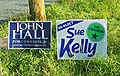 Hall-Kelly campaign signs.jpg