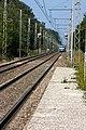Halte Fontainebleau - Forêt IMG 8513.jpg