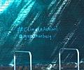 Hashtag climateaction (47971590826).jpg
