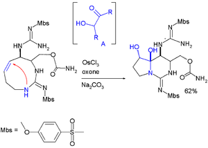 Hemiaminal - Hemiaminal formation in saxitox in synthesis