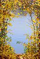 HerbstAmNeckar.jpg