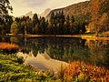 Herbstspiegel.jpg