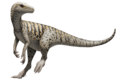 Herrerasaurus ischigualastensis Illustration transparent.png