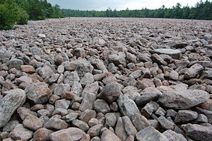 Hickory Run State Park - Boulder Field at Hickory Run State Park, with people in the distance for scale
