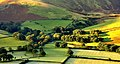 High Nook Farm, Loweswater - panoramio.jpg