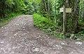 Hiking path near Lac de Vallon (1).jpg